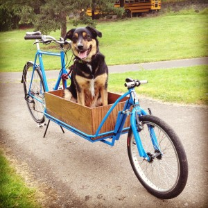 retrofiet cargobike bakfiets dogfiets pdx portland